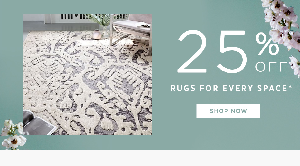 25% Off Rugs For Every Space